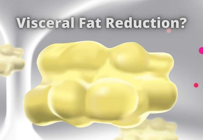 Non-invasive visceral fat reduction